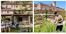 Kochkurs: Sensorielles Erlebnis aus dem Garten der Vergangenheit bei Assisi