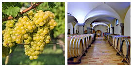Gourmetreise auf einem Weingut im Friaul