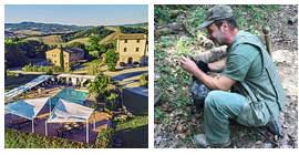 Trüffel und Landruhe in der Toskana: auf gut Glück