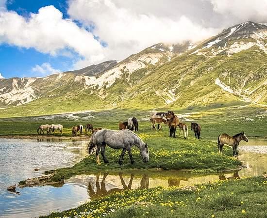 Unberührte Natur auf dem Altopiano Campo Imperatore <br>© Wikimedia Commons (A Passerini [CC-BY-SA-4.0])