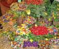 """Bunte Sträuße mit den """"confetti"""" in Sulmona <br>© Wikimedia Commons (Claro48 [PD])"""