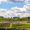 Ihr Borgo inmitten von Weinbergen <br>© Kulturtouristik (Hotel)