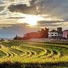 Abendstimmung über den Weinbergen Ihrer Residenz <br>© Kulturtouristik (Hotel)
