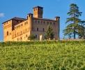 Castello di Grinzane Cavour mit der Enoteca Regionale <br>© Kulturtouristik (Weingut)