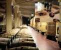 Weindegustation auf einem renommierten Weingut <br>© Kulturtouristik (Hotel)