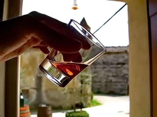 Degustation auf einem Weingut <br>© Kulturtouristik (Weingut)