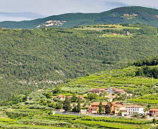 VESPA TOUR: Ruhe in herrlicher Landschaft auf einem Weingut im Valpolicella
